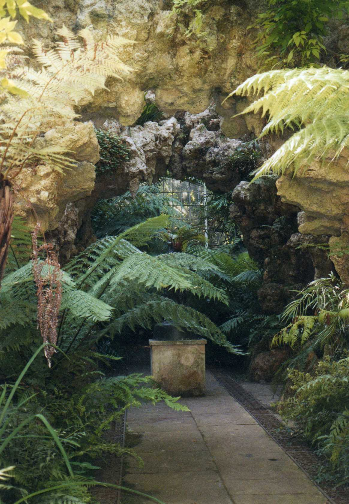 Fernery in the Swiss Garden at Old Warden, Bedfordshire.