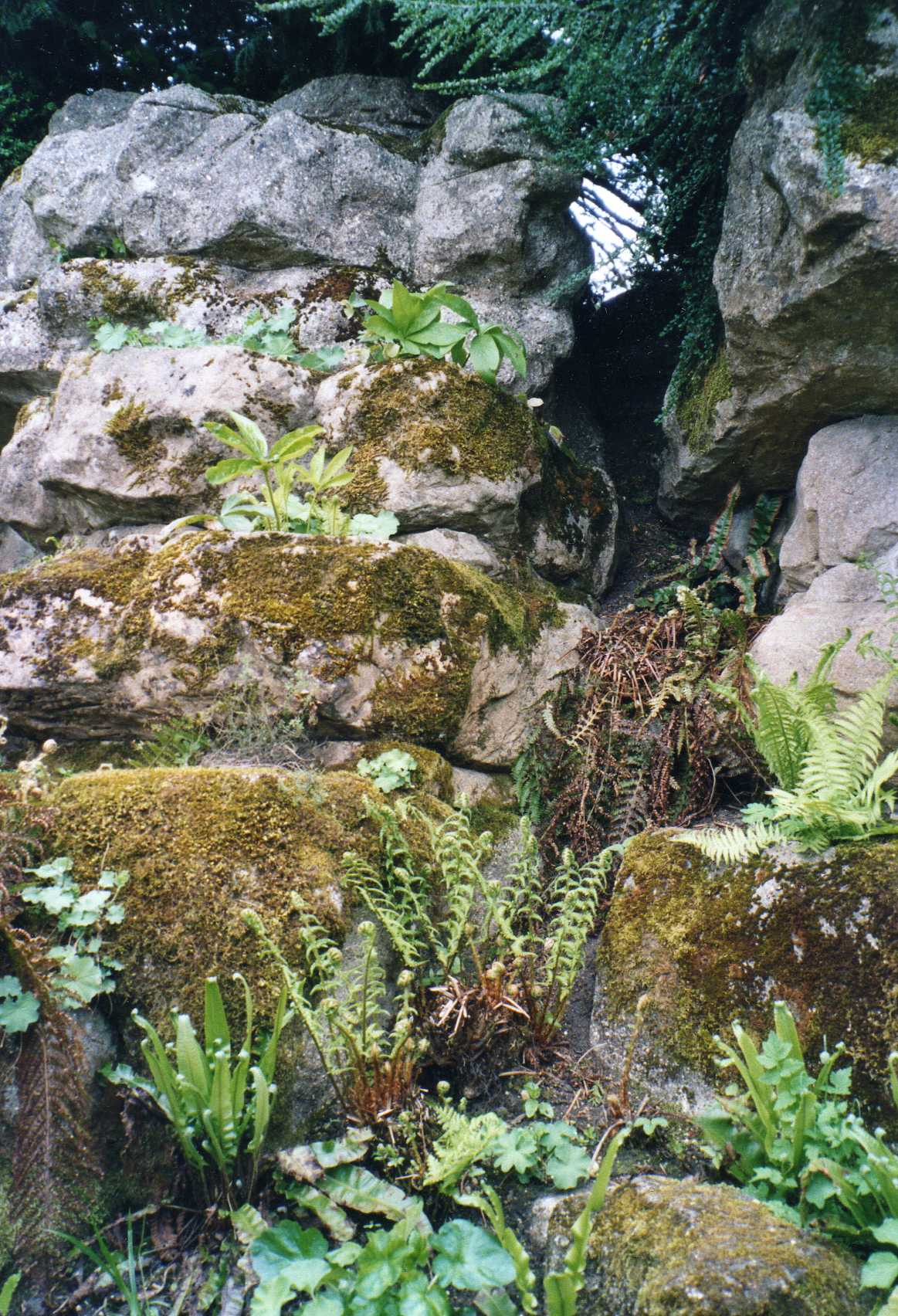 The rockery at Audley End, Essex