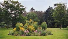 Photograph of an island flower bed on the Elysian Plain, Painshill Park. Copyright Painshill Park Trust.
