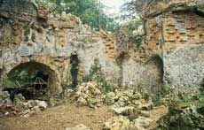 The Grotto, Painshill, before restoration. Photograph by Fred Holmes, June 2006. Copyright Fred HolmesFeature