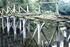 11. Photograph of the Chinese Bridge at Painshill before restoration. Copyright Painshill Park Trust.