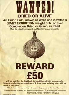 Newton and Ward, seed merchants onion poster