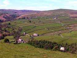 Helwith, Swaledale from Skelton Moor. Photograph by Sally Reckert.
