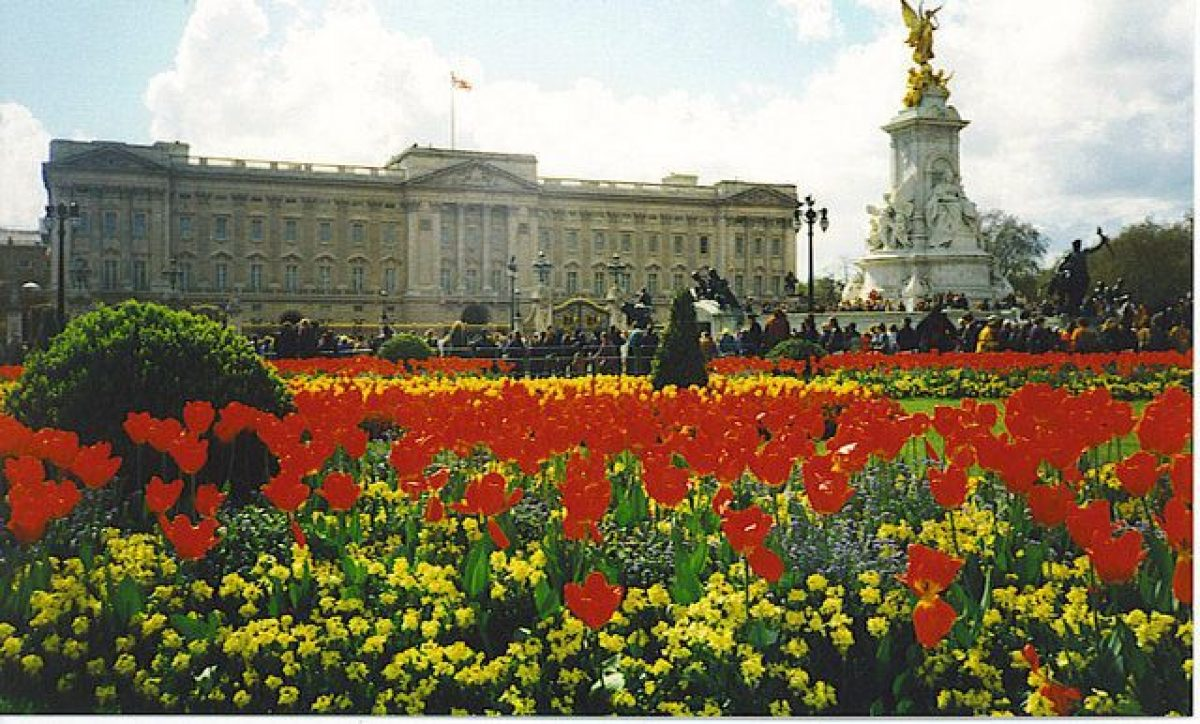 Pgds 20140723 145158 Buckingham Palace And Victoria Memorial   Geograph Org Uk   251093