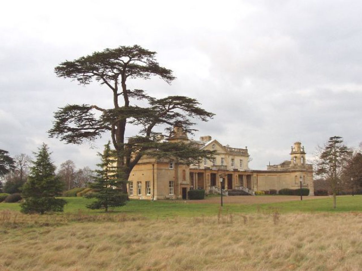 Pgds 20140910 133259 Langley Park Mansion With Cedar Tree   Geograph Org Uk   107444