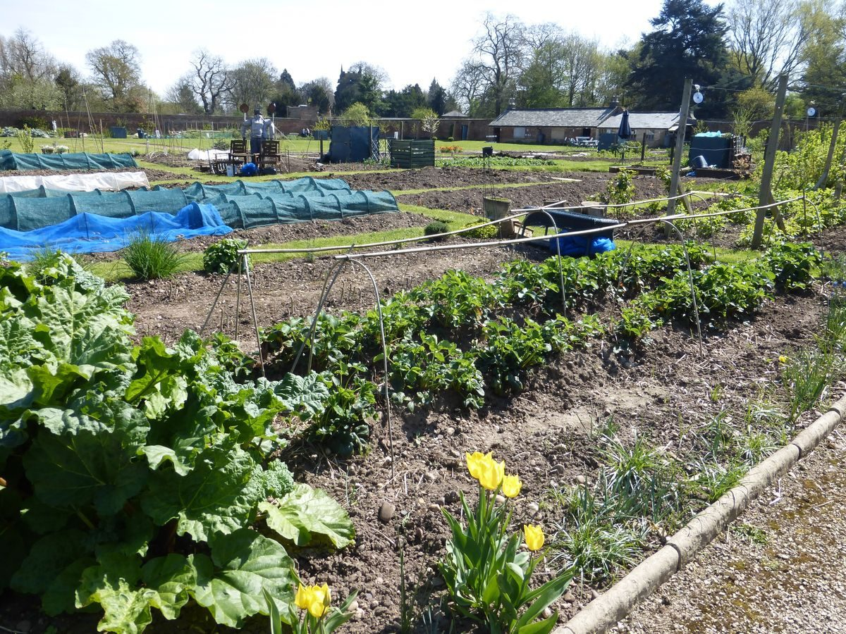 Pgds 20150728 112932 Allotments